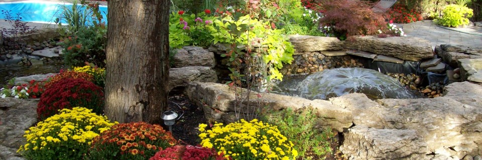 Perennials will last FOREVER, and even better, they can be transplanted throughout your property.